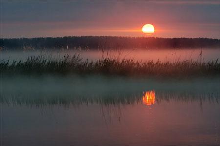 Фото к стихотворению Никитина 'Утро'