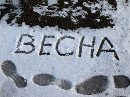 Фото иллюстрация к стихотворению Плещеева Весна (Уж тает снег...)