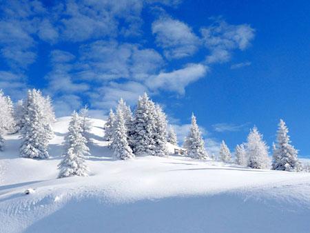 Фото картинка к стихотворению Пушкина 'Зимнее утро'