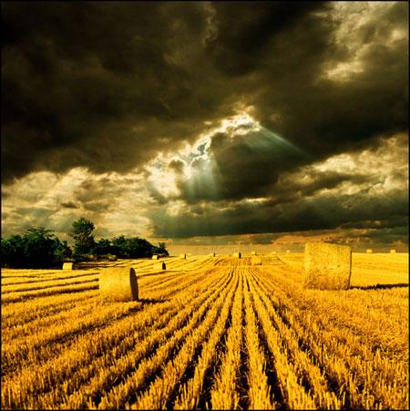 Фото картинка к стихотворению Пушкина 'Уж небо осенью дышало'