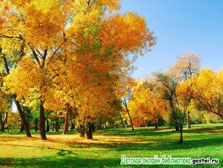 Фото иллюстрация к стихотворению Пушкина А.С. 'Осень'
