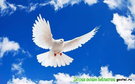 Фото иллюстрация к стихотворению Пушкина А.С. 'Птичка'